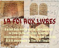 http://dc243.4shared.com/img/4wh7TIcL/s7/0.9263395573049149/la_foi_aux_livres.png
