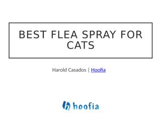 Best Flea Spray for Cats and Dogs.docx