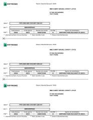 RIB_CHRISTY-BRUNEL.pdf