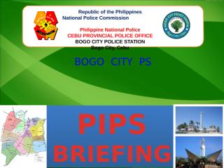 PIPS BRIEFING - March 1, 2013.pptx