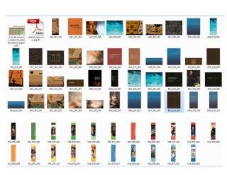Cédulas (lonas) en miniatura con nomenclatura.pdf