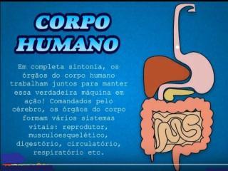 Sistemas_Vitais_do_Corpo_humano.pptx
