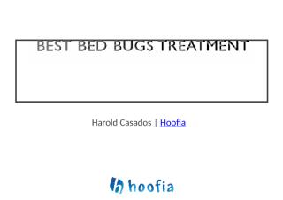 Best Professional Treatment for Bed Bugs.docx