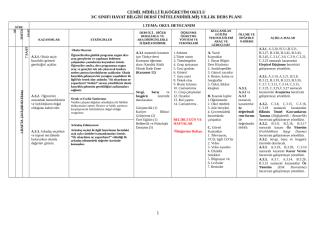 3-C HAYAT BİLGİSİ(OKYAY).doc