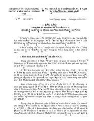 BAO CAO TONG KET 10 NAM LUAT PCCC.doc