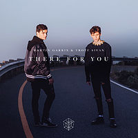 Martin Garrix & Troye Sivan - There For You - MP3 320.mp3